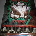 Other Collectable - Mortal Decay poster