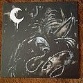Leviathan - Tape / Vinyl / CD / Recording etc - A Silhouette in Splinters LP for you!