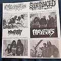 Agathocles - Tape / Vinyl / CD / Recording etc - Witchhunt Records-compilation