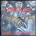 Corpus Vile - Tape / Vinyl / CD / Recording etc - Corpus Vile - What Does It Take 1989 Original Press Fringe Records