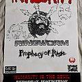 Integrity/Ringworm 1995 Euro tour poster