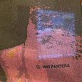 Pantera - Other Collectable - Vintage Pantera Flag 1993