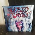 Morbid Saint - Tape / Vinyl / CD / Recording etc - Morbid Saint - spectrum of death