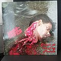 Meat Shits - Tape / Vinyl / CD / Recording etc - Meat shits - sniper LP