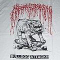 MODORRA - BODYBAG Bulldog Attack split shirt