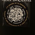 Alice In Chains - Other Collectable - Alice In Chains magnet