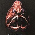Prodigy - Breath Tour -96