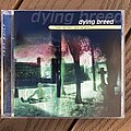 Dying Breed - Tape / Vinyl / CD / Recording etc - Dying Breed Take My Soul... Give me Grace cd