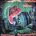 Destruction - Other Collectable - Destruction - Cracked Brain poster