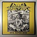 Toxic Holocaust - Tape / Vinyl / CD / Recording etc - Toxic Holocaust - Evil Never Dies vinyl