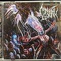 MAGGOT COLONY - Tape / Vinyl / CD / Recording etc - Maggot Colony - Perpetuating The Vile Infestation Cd