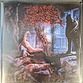 Guttural Secrete - Nourish The Spoil Promo Cd Tape / Vinyl / CD / Recording etc