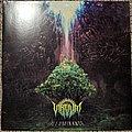 Virvum Illuminance Vinyl