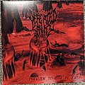 Defeated Sanity Prelude To Tragedy Vinyl Limited