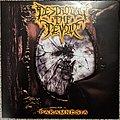 Destroying The Devoid - Tape / Vinyl / CD / Recording etc - Destroying The Devoid - Paramnesia Vinyl