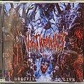 Vomit Remnants - Tape / Vinyl / CD / Recording etc - Vomit Remnants - Grooving Back To LIve Cd