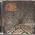 Spawn Of Possession - Tape / Vinyl / CD / Recording etc - Spawn Of Possession - Cabinet Cd