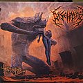 DIsentomb The Decaying Light Digipak Cd