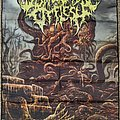 Disfigurement Of Flesh - Other Collectable - Disfigurement Of Flesh - Deity Of Hideous Fertility Flag