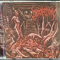 Dysmorfectomy - Rapist Of Flesh Cd Tape / Vinyl / CD / Recording etc