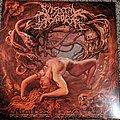 Visceral Disgorge Slithering Evisceration Vinyl