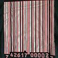 Slipknot - Hooded Top - Slipknot - 20th Anniversary Barcode Hoodie