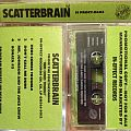 Scatterbrain Collection Other Collectable