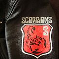Other Collectable - Scorpions Logo Painted Onto My Leather