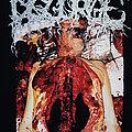 DISGORGE (MEX) - TShirt or Longsleeve - Disgorge - Chronic Corpora Infest T-shirt