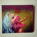 Cannibal Corpse - Tape / Vinyl / CD / Recording etc - Cannibal Corpse Violence Unimagined Europe Digipack CD