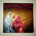 Cannibal Corpse - Tape / Vinyl / CD / Recording etc - Cannibal Corpse Violence Unimagined ( Europe Edition ) Pot - Green Mushroom...