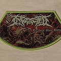 Ingested - Patch - The Level Above Human