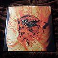 """Dismember """"Indecent and Obscene"""" LP Tape / Vinyl / CD / Recording etc"""