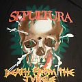 TShirt or Longsleeve - Sepultura - vintage Death from the jungle tour - shirt