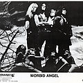 MORBID ANGEL - Original Promo Card from 1991 - Size 5'' x 7'' Other Collectable