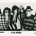 UK Subs - Other Collectable - UK SUBS - Original Promo Sedcard from 1991 - Size 5'' x 7''