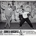 Gorilla Biscuits - Other Collectable - GORILLA BISCUITS - Original Promo Sedcard from 1991 - Size 5'' x 7''