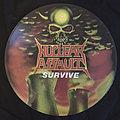 Nuclear assault survive picture disc vinyl 1988 Tape / Vinyl / CD / Recording etc