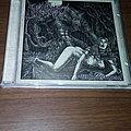 The Black Sorcery - Tape / Vinyl / CD / Recording etc - The Black Sorcery-Wolven Degrade