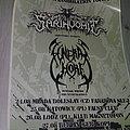 Sarinvomit / funeral whore - european mass annihilation tour 2019