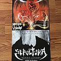 Sepultura - Poster Collection Other Collectable