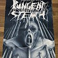 Pungent Stench - Tortour '91 - Poster (Autographed) Other Collectable