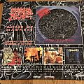 Morbid Angel - Poster Collection Other Collectable
