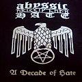 TShirt or Longsleeve - abyssic hate shirt