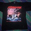 Annihilator - TShirt or Longsleeve - Annihilator - Set the World on Fire shirt
