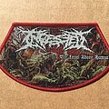 Ingested - Patch - Ingested The Level Above Human