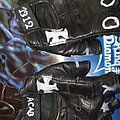 / - Other Collectable - Battle Gloves?