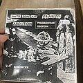 Brainless - Tape / Vinyl / CD / Recording etc - Panx vinyl zine 06