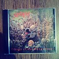 Suffocation - Tape / Vinyl / CD / Recording etc - Suffocation-Effigy Of The Forgotten cd