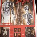 """Other Collectable - Death HUMAN Poster 24""""x36"""""""